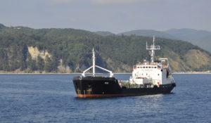 m/v Rene Krasnodar region, Tuapse black sea